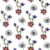 De naadloze waterverf bloeit patroon Hand geschilderde bloemen op een witte achtergrond Hand geschilderde bloemen van verschillen royalty-vrije illustratie