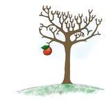 De naakte boom van Apple Stock Fotografie