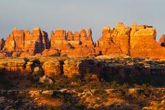 De naalden van Canyonland Stock Afbeeldingen