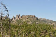 De Naalden in de Zwarte Meningen Heuvels Zuid- van Dakota en van de Berg stock foto