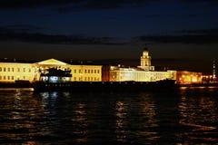 De nacht in heilige-Petersburg Stock Afbeeldingen