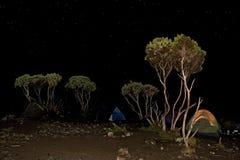 de nacht van de kamptent Stock Foto