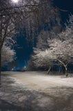 De Nacht van de winter Stock Foto's
