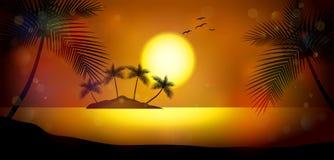 De nacht van de zomer Palmen op de achtergrond van zonsondergang Royalty-vrije Stock Foto