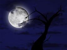 De nacht van Halloween Royalty-vrije Stock Foto's