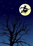 De nacht van Halloween Stock Afbeelding