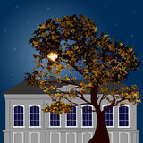 De nacht van het de herfstmaanlicht in de stad Royalty-vrije Stock Afbeelding