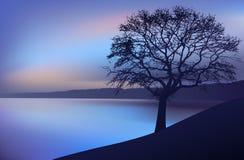De nacht van het landschap, een boom dichtbij de rivier Royalty-vrije Stock Foto