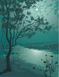 De nacht van het maanlicht stock illustratie