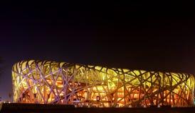 De nacht van het Nationale Stadion Stock Fotografie