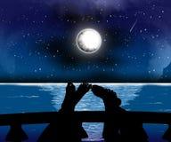 De nacht van silhouetten Stock Foto's