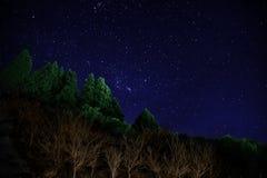 De Nacht van Stary royalty-vrije stock afbeelding