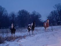 De nacht van de winter stock foto