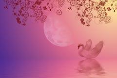 De nacht zwemt Stock Afbeeldingen
