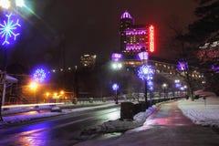 De Nachten van de Niagarawinter Stock Foto's