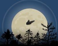 De nachthemel met maan vectorillustratie Een mot vliegt over het bos stock illustratie