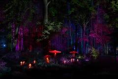 De nachtlichten tonen `-Inspiratie ` in Ostankino-het park van de tuinstad Honderden lichten in het bos die 3d licht en laserillu Royalty-vrije Stock Foto's