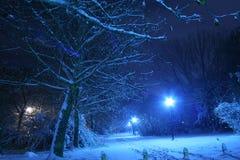 De nachtscène van de winter stock afbeeldingen