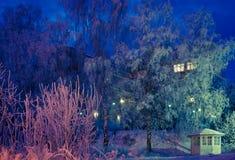 De nachtscène van de winter Stock Foto
