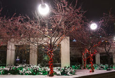 De nachtscène van Montreal Stock Afbeeldingen