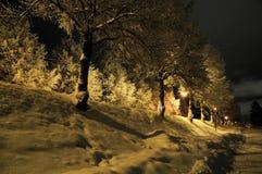 De nachtweg van de winter Royalty-vrije Stock Afbeelding