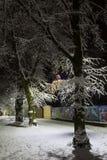 De nachtwinter St George Cathedral in Lviv, de Oekraïne Royalty-vrije Stock Foto