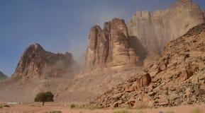 De naderbij komende Lente van Lawrence ` s in Wadi Rum, Jordanië Royalty-vrije Stock Foto's