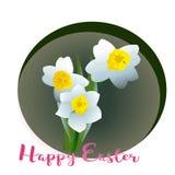 De narcissen van de de lentebloem voor Gelukkige Pasen Stock Afbeelding