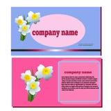 De narcissen van de de lentebloem voor schoonheidsmiddelenembleem Royalty-vrije Stock Afbeeldingen