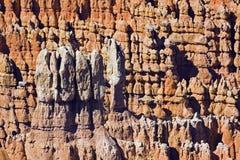De Nationaal Canion van Bryce. Park, Utah Royalty-vrije Stock Foto