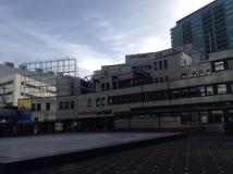 De Nationale Bibliotheek van Den Haag Stock Afbeeldingen
