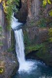 De Nationale bos-Roge-UmpquaScenic byway-Toketee Dalingen van Oregon-Umpqua Dit is het landschap van de beeldprentbriefkaar Stock Afbeeldingen