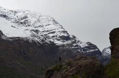 De Nationale Reserve van RÃoblanco, centraal Chili, een hoge biodiversiteitsvallei in Los de Andes stock afbeelding