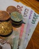 De nationale valuta van de Tsjechische Republiek zijn bankbiljetten en muntstukken van diverse terminals op een vlakke oppervlakt royalty-vrije stock foto's