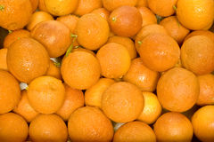 De natte Achtergrond van de Sinaasappelen van het Bloed Royalty-vrije Stock Afbeelding
