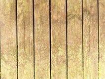 De natte harde houten raad met verwering verzet zich tegen oppervlakte De houten vloer van de strandpijler stock afbeelding