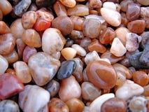 De natte rotsen van het strand Stock Afbeelding