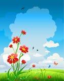De natuurlijke achtergrond van de zomer met bloemen Stock Foto