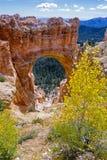 De natuurlijke brug van de Canion van Bryce Stock Afbeelding