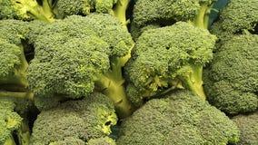 De natuurlijke groente van Brocolobroccoli Stock Fotografie