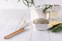 De natuurlijke ingrediënten voor eigengemaakt gezichts en lichaamsmasker of schrobben Kuuroord en Bodycare stock afbeelding