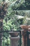 De natuurlijke organische wasbak van de steengootsteen in de wildernis van het eiland van Bali indonesië royalty-vrije stock fotografie