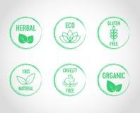 De natuurlijke pictogrammen van het eco organische etiket Stock Afbeeldingen