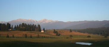 De Natuurlijke reserve van Italië van Cansiglio Royalty-vrije Stock Foto