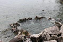 De natuurlijke thermische lente op meer Garda Sirmione Italië royalty-vrije stock foto's