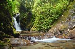 De natuurlijke Waterval van de Lente Royalty-vrije Stock Fotografie