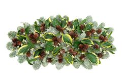 De natuurlijke Winter Flora Decoration stock fotografie