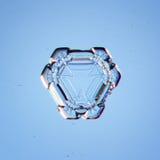 De natuurlijke witte macro van de kristalsneeuwvlok Stock Foto