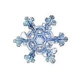 De natuurlijke witte macro van de kristalsneeuwvlok Royalty-vrije Stock Foto