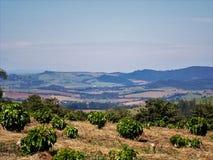 De natuurlijke zon van de aardhorizon paisagem royalty-vrije stock afbeeldingen